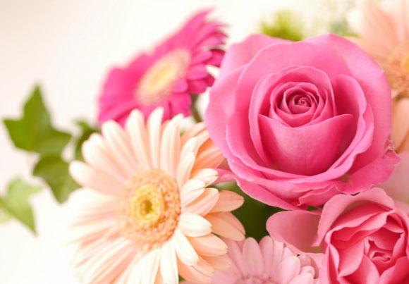 花婚式を表現するイメージ